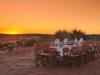 dune_dinner