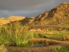 solitaire-guestfarm-desert-ranch3